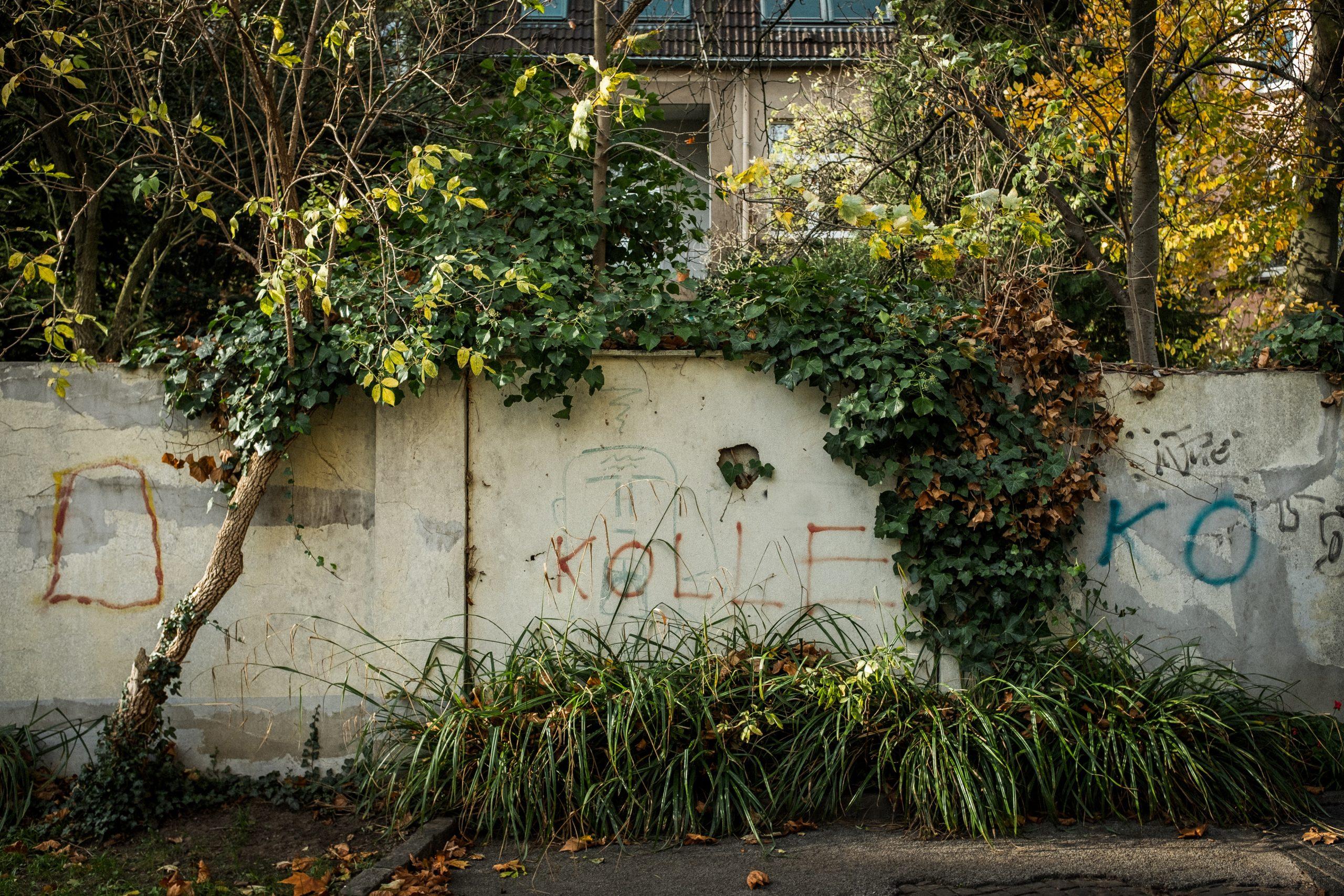 werkstattgespräch urbane biodiversität