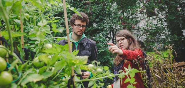 entfällt: urbanes gärtnern im ruhrgebiet
