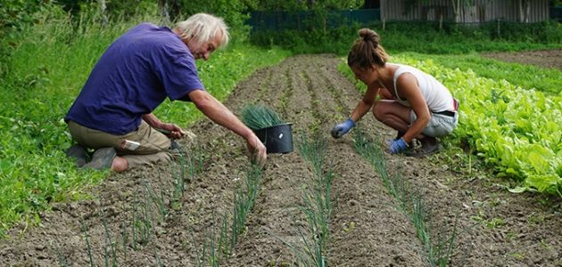 Soil for the future: the value of fields